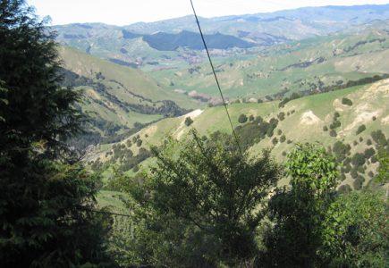 Gisborne, Tiniroto